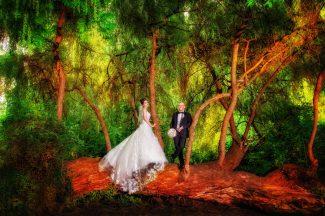 Vitali Gumann Hochzeitsfotograf aus Kassel Professionelle Foto und Video Produktion aus Kassel, Fotografie Nikon Canon Sony,velstudio,artdesign,vel-studio,art-designpark in kassel, heiraten in kassel,standesamt in kassel
